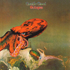 gentle_giant_octopus