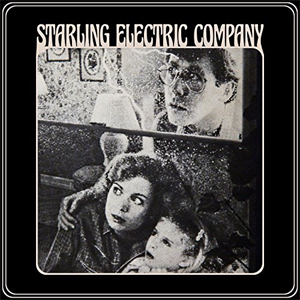 starling_electirc_company